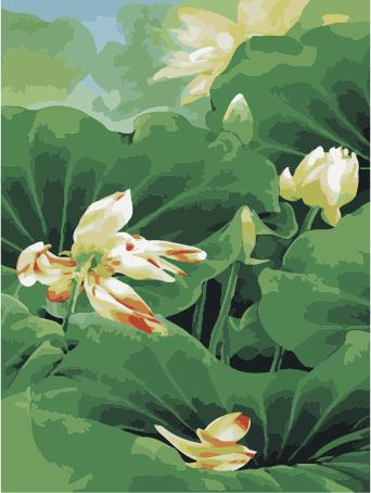 Lotus Diy Paint By Numbers Kits ZXE248