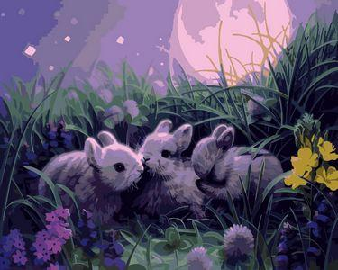 Animal Rabbit Diy Paint By Numbers Kits ZXE299