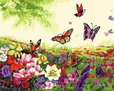 Flying Animal Butterfly Diy Paint By Numbers Kits ZXE343