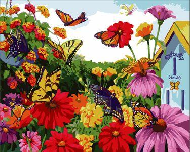 Flying Animal Butterfly Diy Paint By Numbers Kits ZXE344