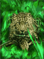 Animal Leopard Diy Paint By Numbers Kits ZXE469
