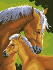 Animal Horse Diy Paint By Numbers Kits ZXE498