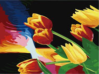 Tulips Diy Paint By Numbers Kits ZXE499
