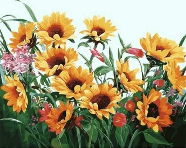 Sunflower  Diy Paint By Numbers Kits ZXQ2365