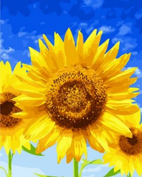 Sunflower Diy Paint By Numbers Kits ZXQ1185 VM80065