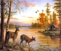 Animal Deer Diy Paint By Numbers Kits ZXQ3557
