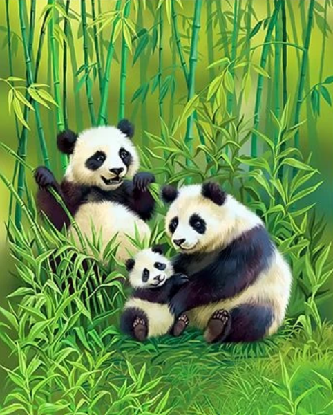 Panda Diy Paint By Numbers Kits ZXQ3854