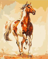 Horse Diy Paint By Numbers Kits PBN54002