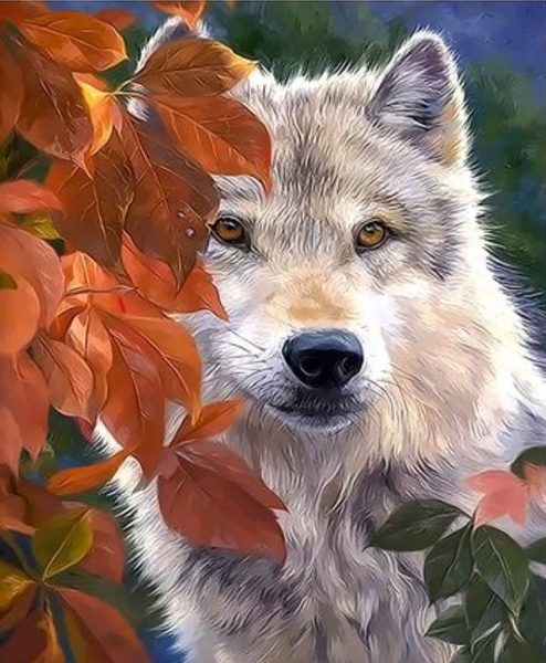 Animal Wolf Diy Paint By Numbers Kits ZXQ3284