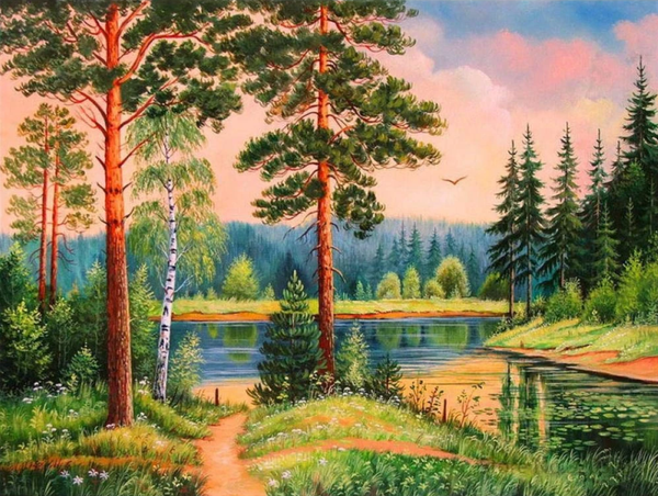 Landscape Nature Forest Diy Paint By Numbers Kits PBN50010