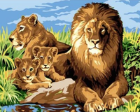 Animal Lion Diy Paint By Numbers Kits ZXQ2194