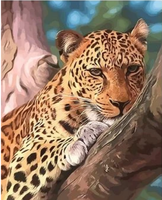 Animal Leopard Diy Paint By Numbers Kits ZXQ2647