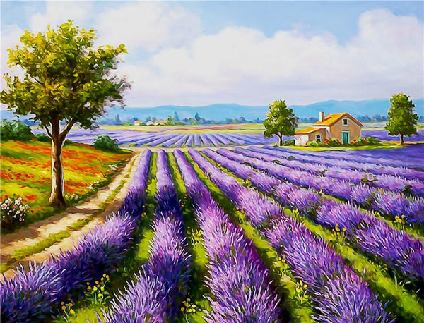 Landscape Lavender Diy Paint By Numbers PBN90414