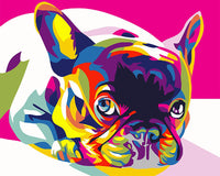 Colorful Dog Diy Paint By Numbers Kits VM91189
