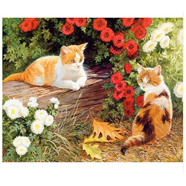 Cat Diy Paint By Numbers Kits PBN94530