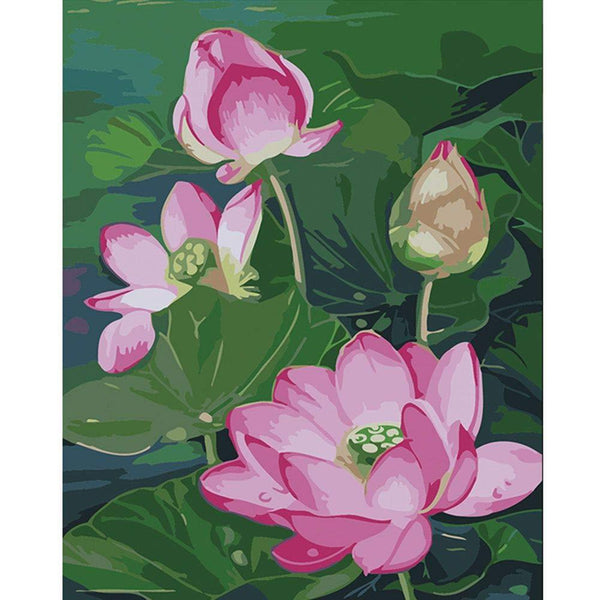 Lotus Diy Paint By Numbers Kits PBN95508
