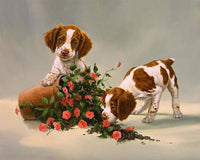 Lovely Dog Diy Paint By Numbers Kits VM95936
