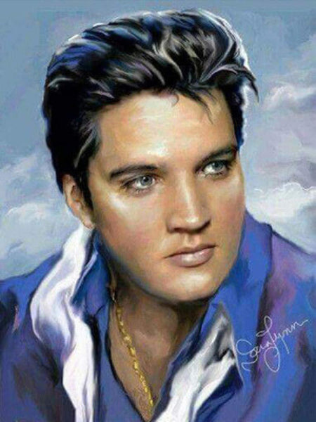 Elvis Presley Diy Paint By Numbers Kits PBN96231