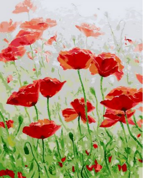 Poppy Flower Diy Paint By Numbers Kits ZXQ1042