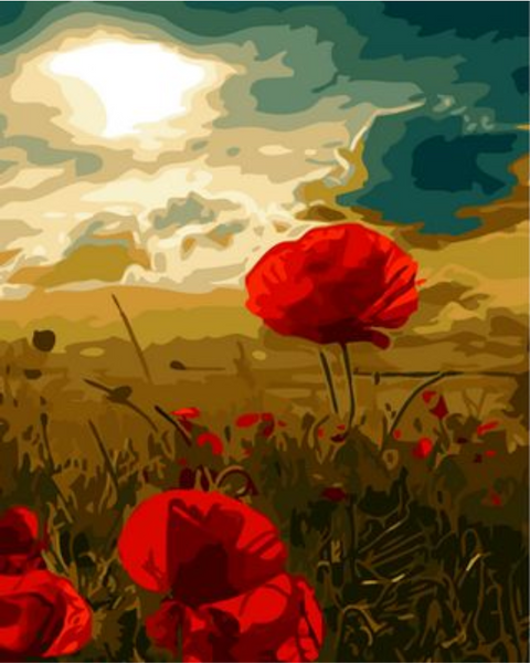 Poppy Flower Diy Paint By Numbers Kits ZXQ1099