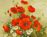 Poppy Flower Diy Paint By Numbers Kits ZXQ2438