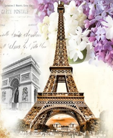 Landscape Eiffel Tower Diy Paint By Numbers Kits ZXQ3481
