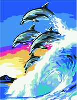 Dolphin Diy Paint By Numbers Kits ZXQ3554