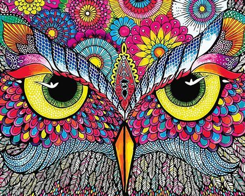 Owl Diy Paint By Numbers Kits ZXQ3933