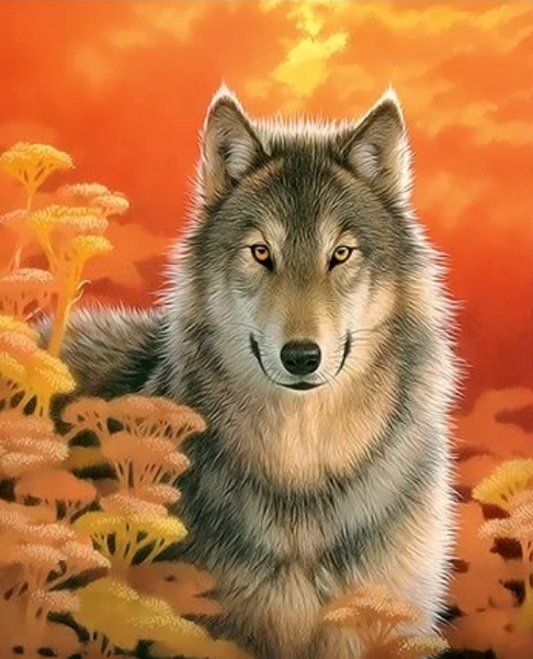 Animal Wolf Diy Paint By Numbers Kits ZXQ3319