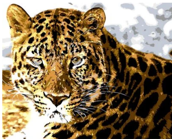 Animal Leopard Diy Paint By Numbers Kits ZXQ751