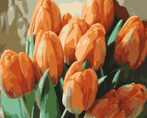 Tulips Diy Paint By Numbers Kits WM-1037
