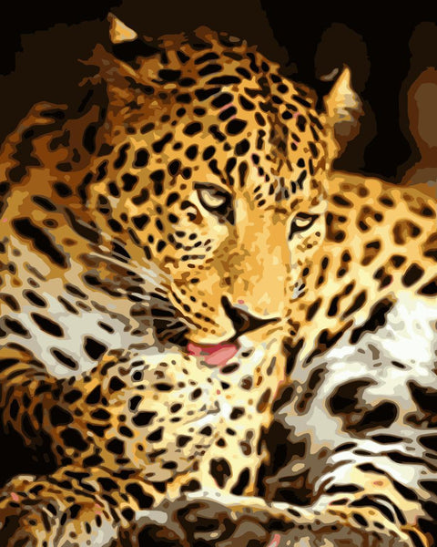 Leopard Diy Paint By Numbers Kits WM-1314