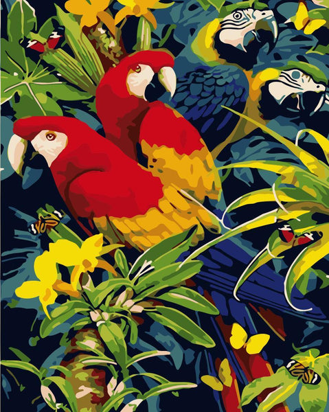 Parrot Diy Paint By Numbers Kits WM-1321
