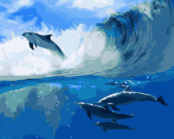 Dolphin Diy Paint By Numbers Kits WM-1358
