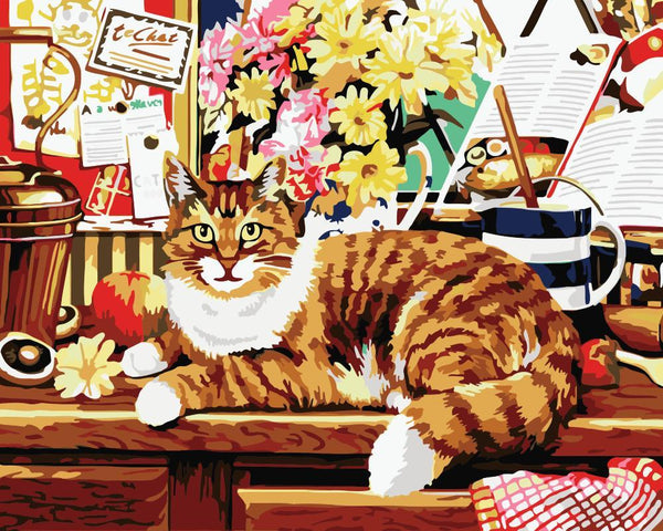Cat Diy Paint By Numbers Kits WM-1455
