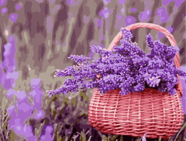 Lavender Diy Paint By Numbers Kits WM-1483