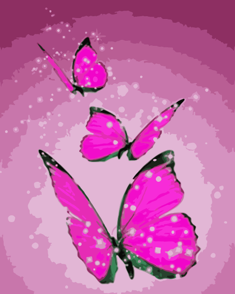 Butterfly Diy Paint By Numbers Kits WM-1555