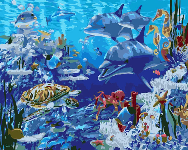 Dolphin Diy Paint By Numbers Kits WM-1579
