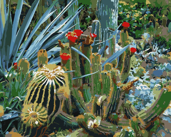 Cactus Diy Paint By Numbers Kits WM-1695