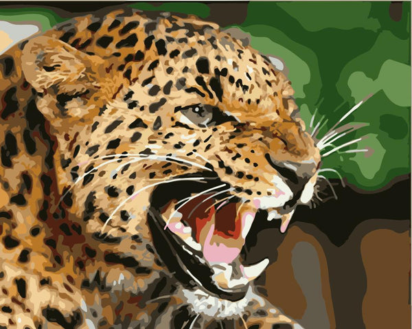 Leopard Diy Paint By Numbers Kits WM-1699