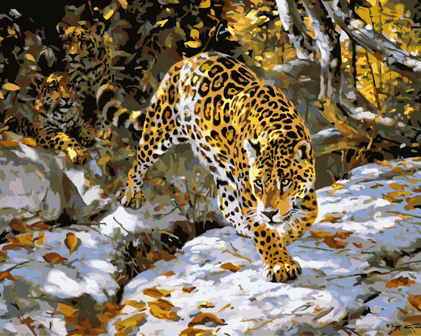 Leopard Diy Paint By Numbers Kits WM-179