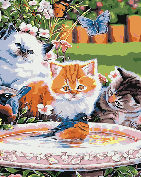 Cat Diy Paint By Numbers Kits WM-280