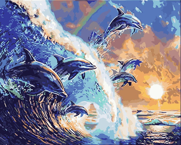 Dream Dolphin Diy Paint By Numbers Kits WM-291