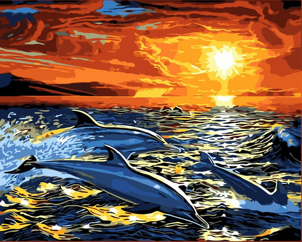 Dream Dolphin Diy Paint By Numbers Kits WM-343