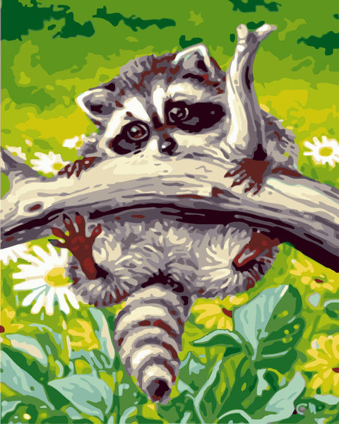 Raccoon Diy Paint By Numbers Kits WM-357
