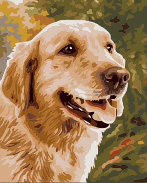 Cute Dog Diy Paint By Numbers Kits WM-407