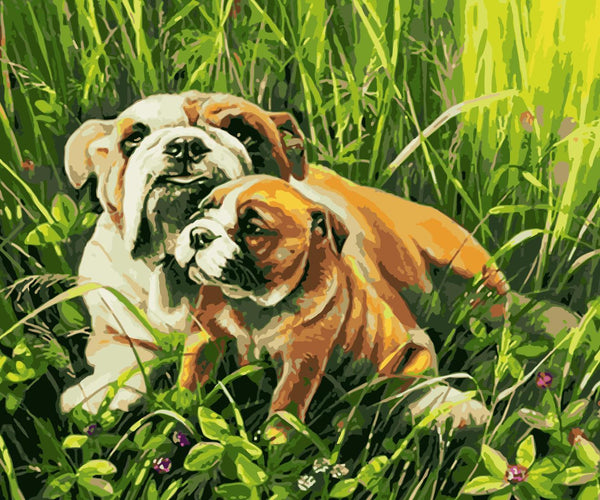 Dog Diy Paint By Numbers Kits WM-413
