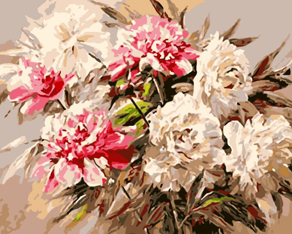 Peony Diy Paint By Numbers Kits WM-452
