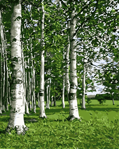 Landscape Forest Diy Paint By Numbers WM-499