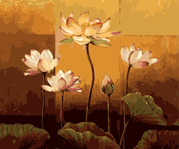 Lotus Diy Paint By Numbers Kits WM-514